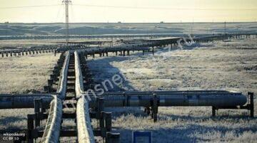 Транспортировка природного газа, ООО ТрансНефтеГаз